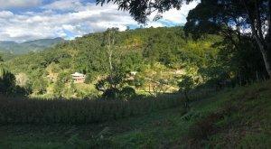 Terreno Águas Mornas Santa Cruz da  Figueira